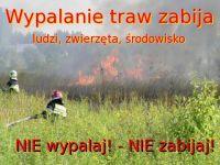 Czytaj więcej: Apel i ostrzeżenie dla wypalaczy traw
